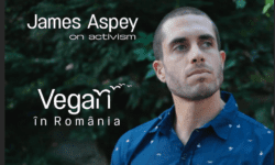 James Aspey în Romania