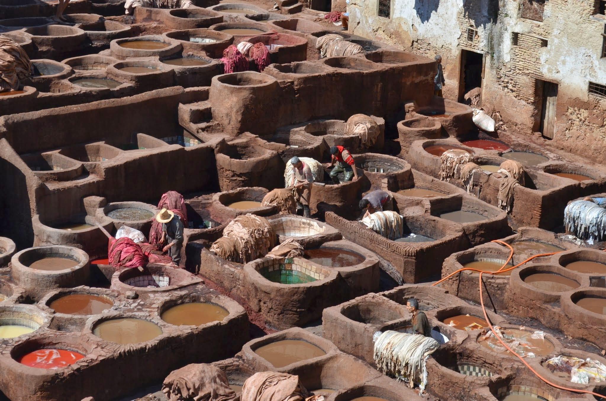 Prelucrarea pielii în Maroc. Muncitorii se scufundă în soluțiile toxice și cancerigene. Sursa foto: Vegan în România / Alexandra Vancea 2014