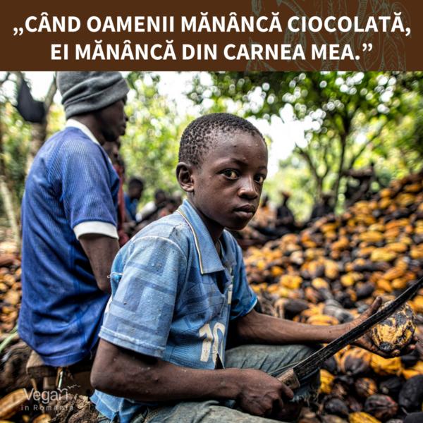 Societatea consideră că ciocolata e mai importantă decât copiii.