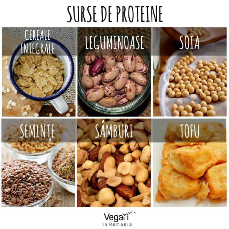 Surse bogate de proteine