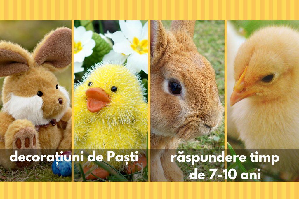 A îngriji un animal e o răspundere serioasă; iepurii și puișorii nu sunt jucării sau decorațiuni